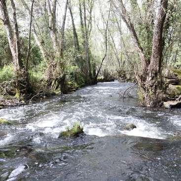 Fluss In Portugal sitting dringend mitte august unterkunft nähe fluss in der