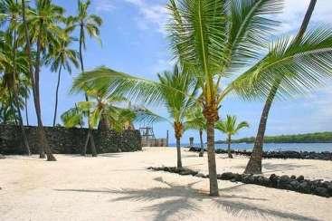 Arbeiten Auf Hawaii arbeiten und surfen lernen auf hawaii