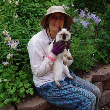 Work away at our lovely home and gardens in fairbanks alaska solutioingenieria Gallery