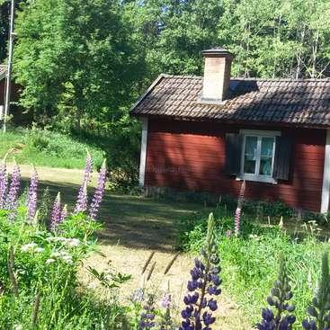 Help sleeping beauty shine again in Boxholm Östergötland - close to Motala 6cf21187e1a64