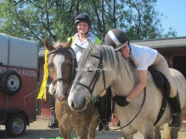 Love ponies? Do you ride? Looking for a Volunteer for 2
