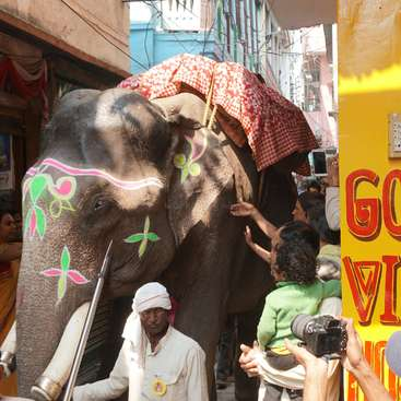 Help and share good vibes at a hostel in hippie lane, Varanasi, India