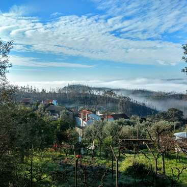 Nature Friendly Farm And Tourism Project In Beautiful Figueiro Dos