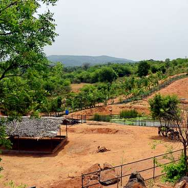 Learn about permaculture and enjoy an incredible vista of