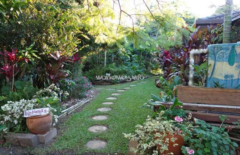 Permaculture gardening australia garden ftempo for Gardening zones australia