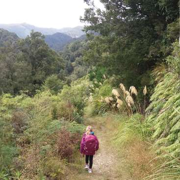 Volunteer And Work In New Zealand Low Cost Travel Abroad Workaway