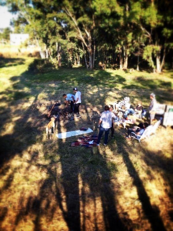 Help in sustainable project in Punta del Este
