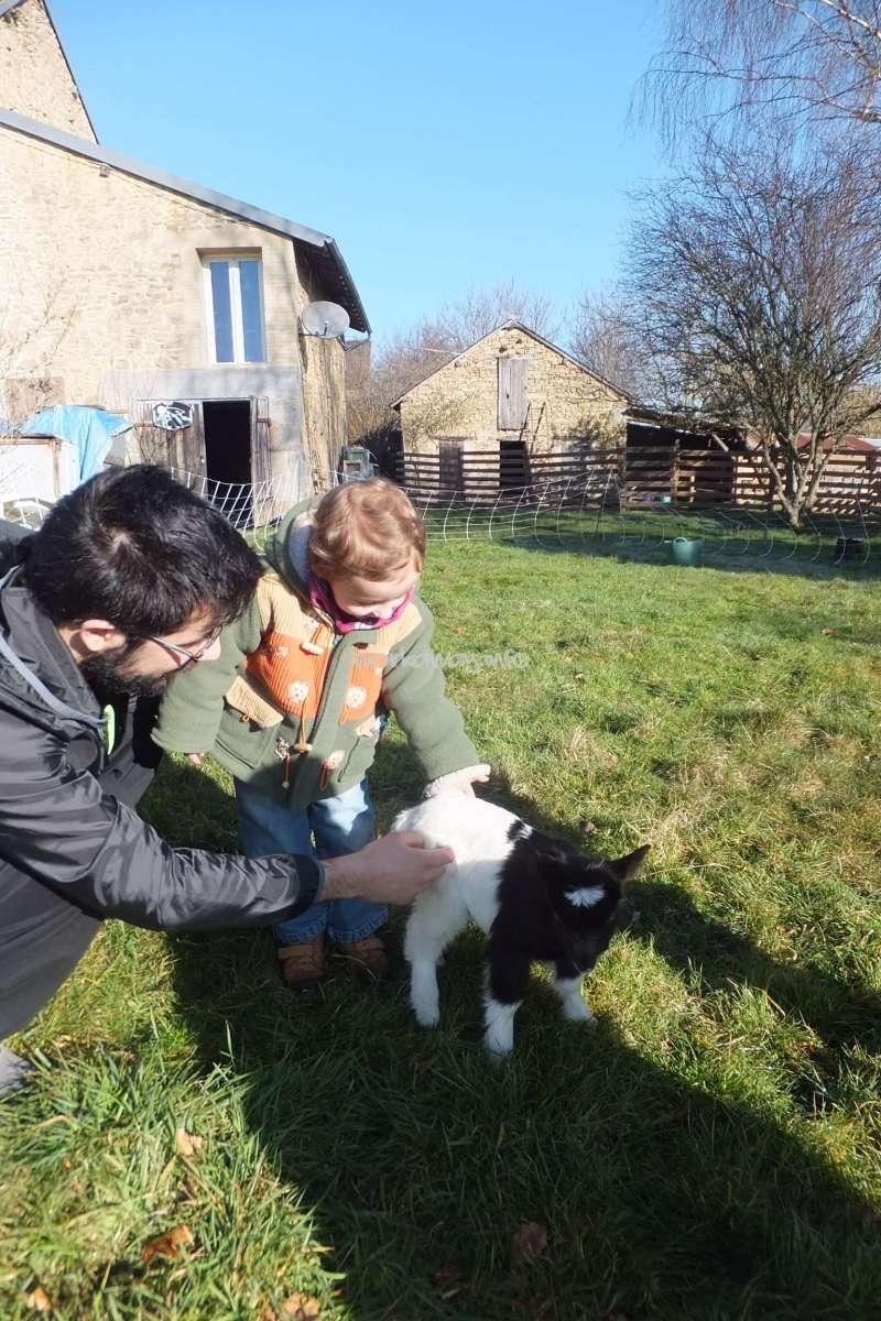 Aide la ferme potager et animaux garde d 39 enfant au for Au jardin d enfant