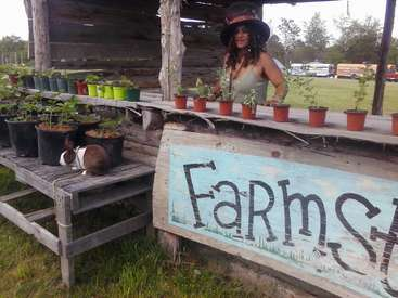 Organic Off Grid Community Farm Looking For People To Come And Help In  Lafayette, TN, USA