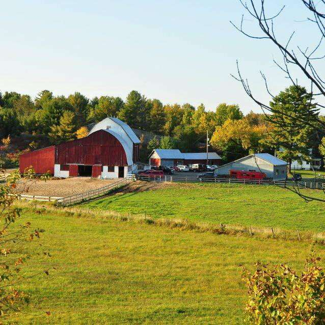 Horse Stable Looking For Fun, Mature Help in South Muskoka ...