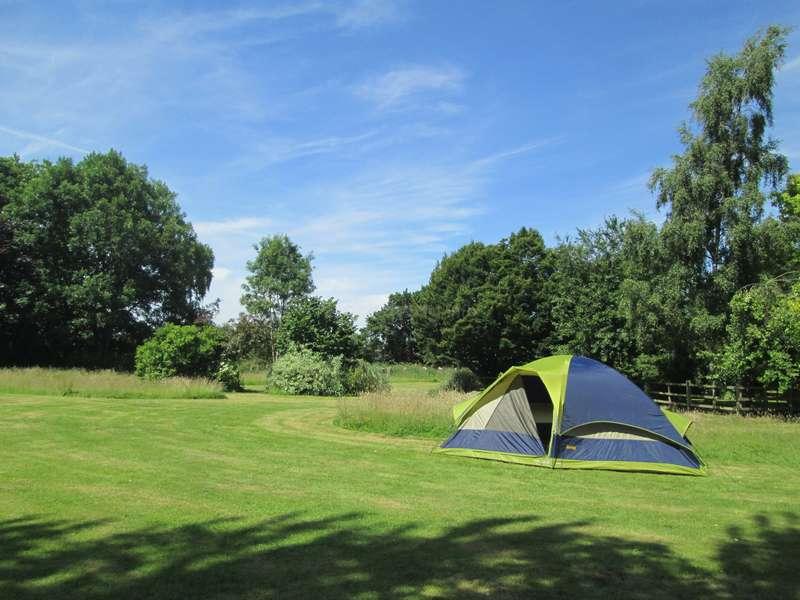 Besoin d 39 aide dans un camping au jardin et la maison for Camping au jardin
