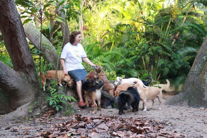 Small ecological arts and retreat centre in Bahia, Brazil needs help ...