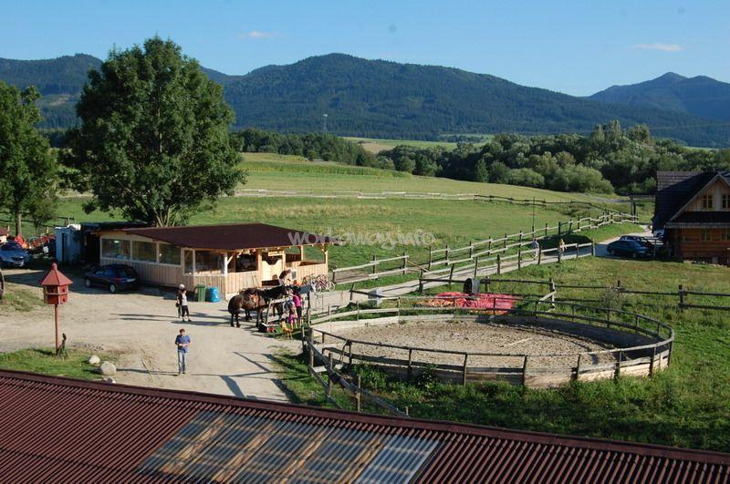 Help With Horses And Animals In Slovakia Workaway Info