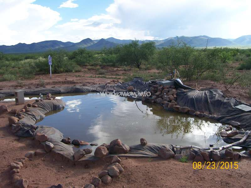 Volunteer and live at an off grid farmstead near tombstone for Fish pond base
