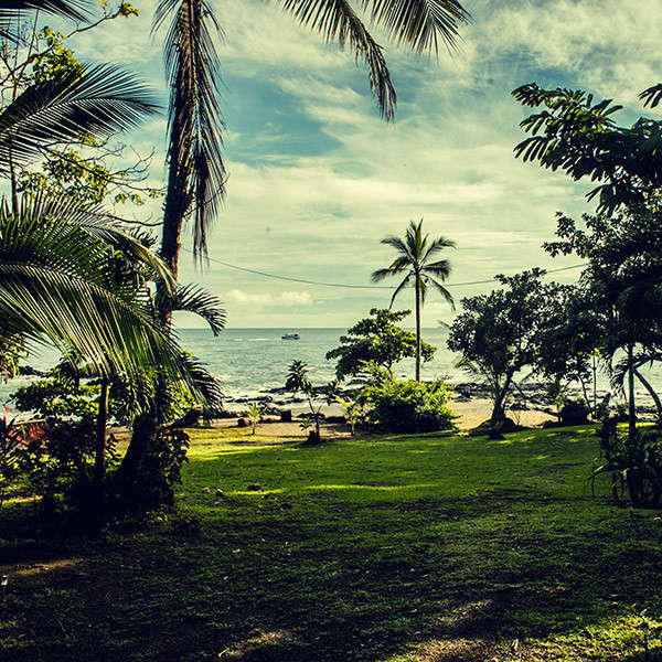 Osa Peninsula Costa Rica Hotels: Strandhotel Und Glampingplatz, Regenwald, Osa Peninsula