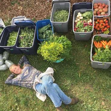 Ecological Farm, Market Garden and Education Centre in the rolling ...