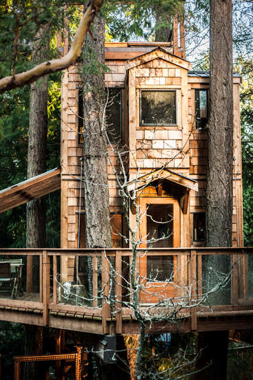 Victoria Bc Treehouse Stay In Exchange For General Indoor Outdoor