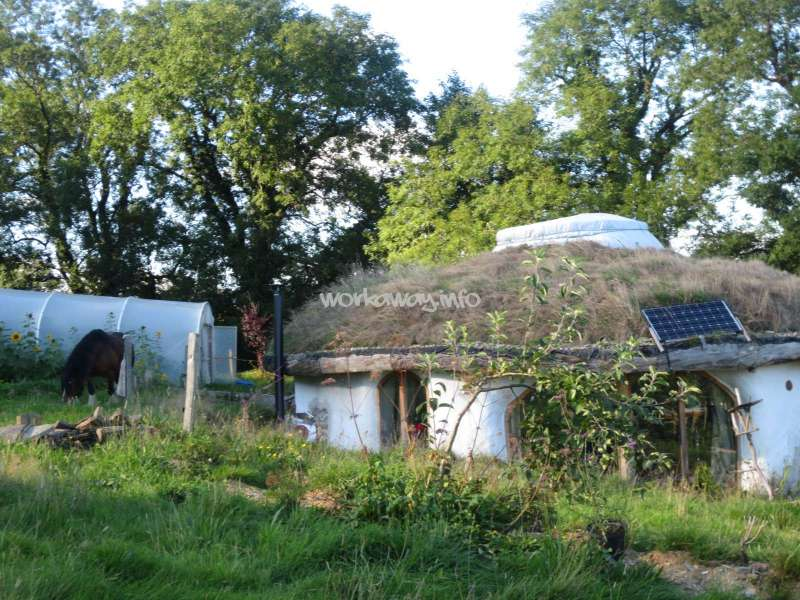 Help to build a timber frame roundhouse in Wales