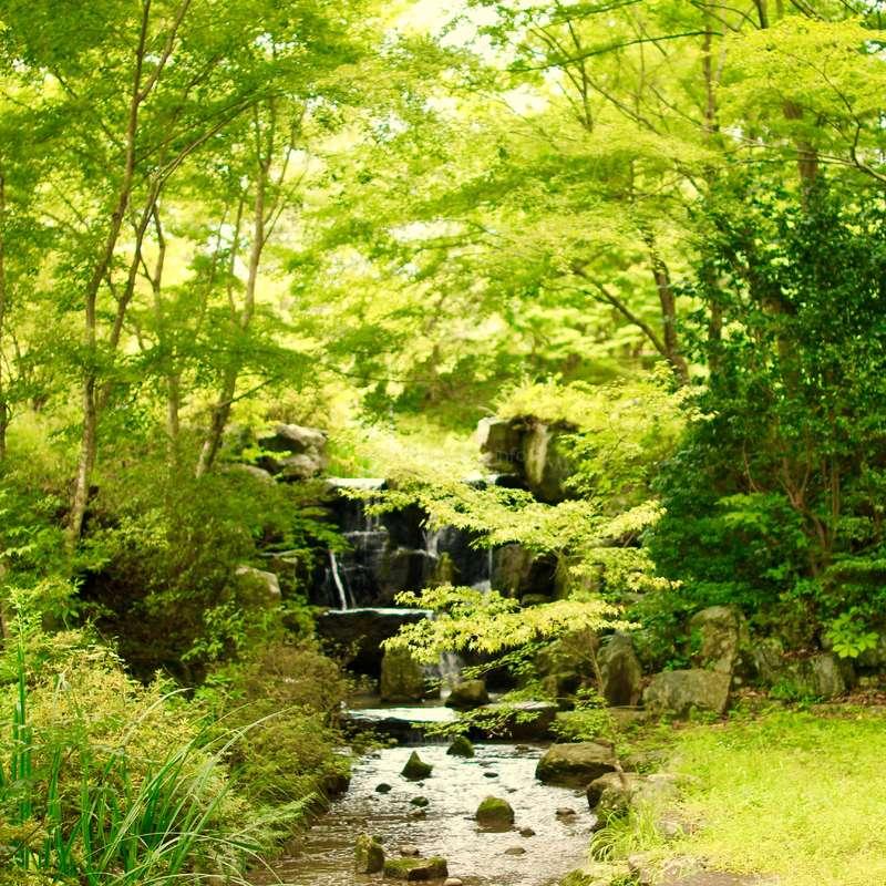 Beautiful Nature Life In The Nature Resort In Kumakogen