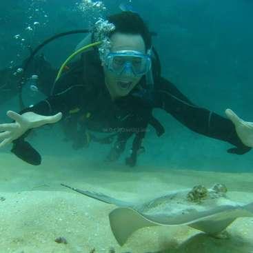 Help with some odd jobs Emerald, Queensland , australia