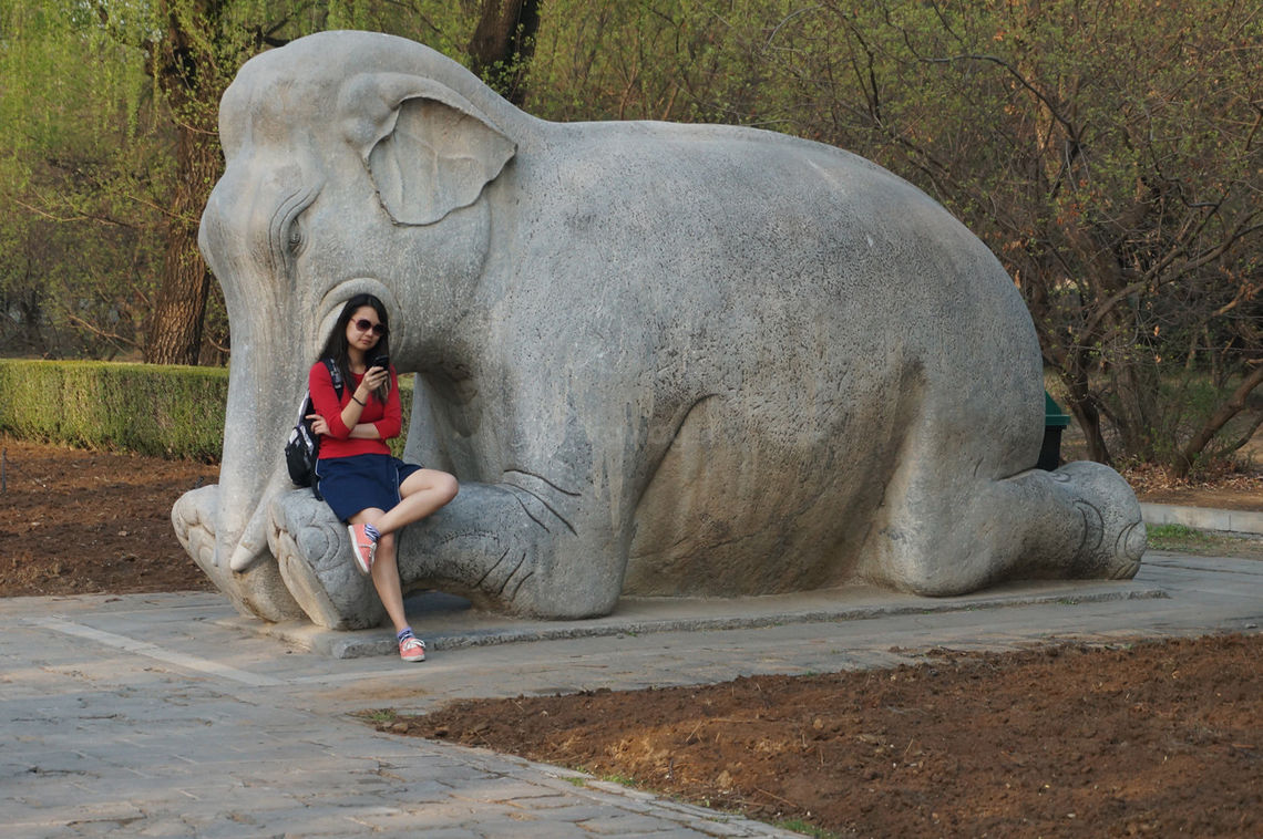 Elephant statue and texter