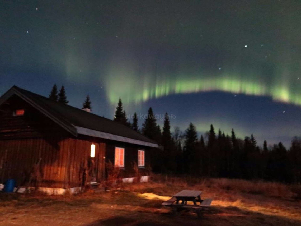 northern lights behind cabin