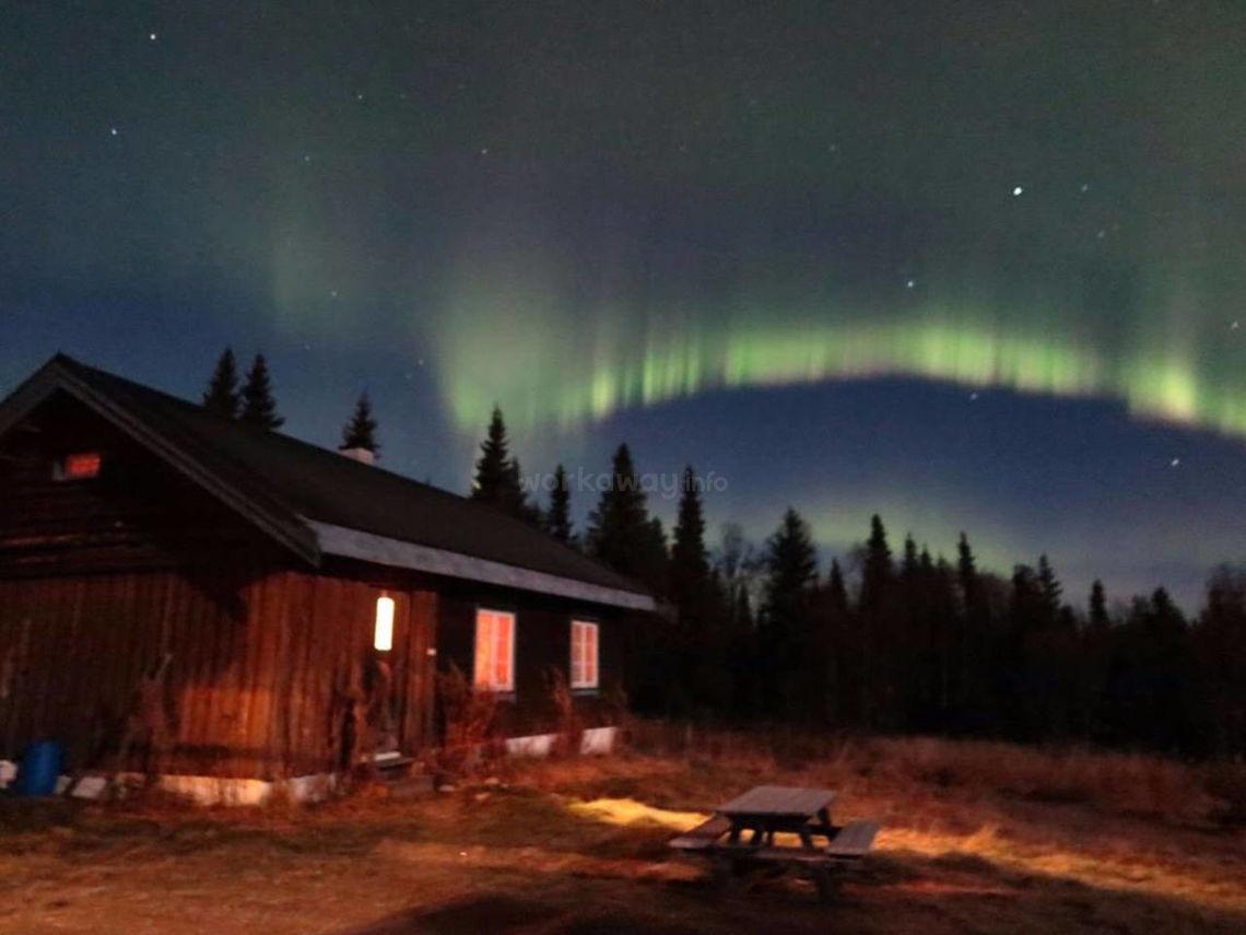 northern lights behind cabin