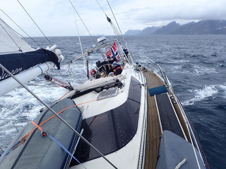 boat-sailing-seas-for-marine-organisation