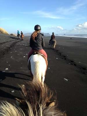 female solo traveller volunteer iceland advice