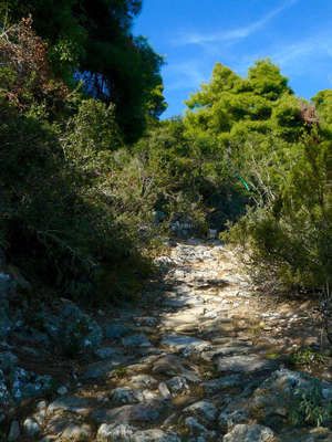 Skopelos-mamma-mia-location-greece-path-outdoors