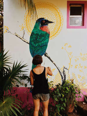 workawayer painting bird mural