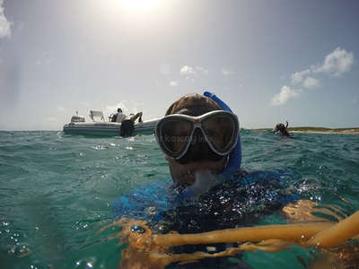 workaway snorkeling in bahamas