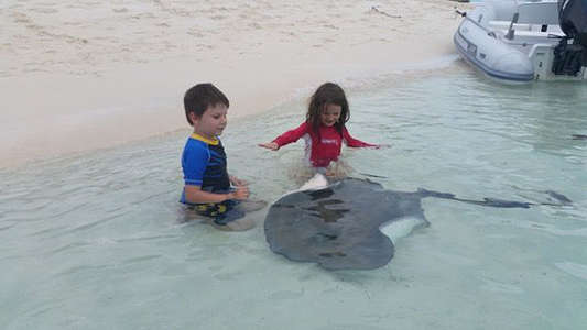 workaway host kids stingray encounter