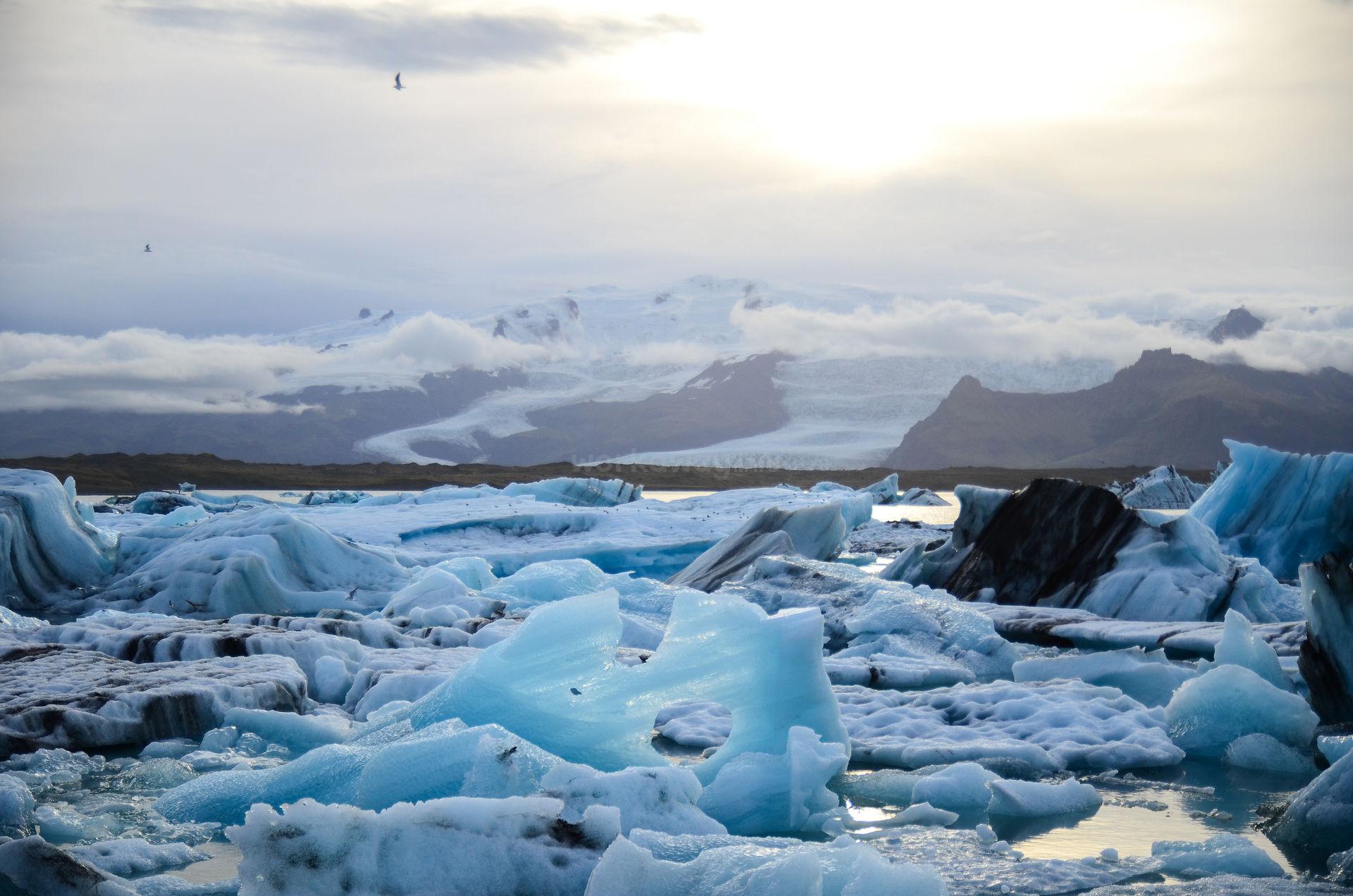 iceland beach scenery