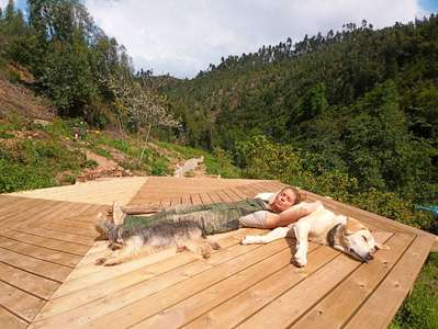 outdoor nature siesta with dogs