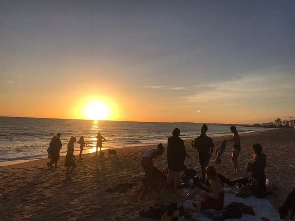 algarve sunset beach with rescue dogs and workaway volunteers travel adventure