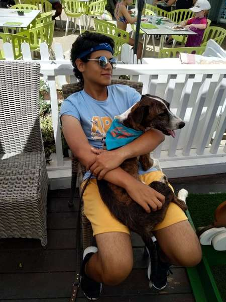 animal refuge algarve cuddling happy dog rescue