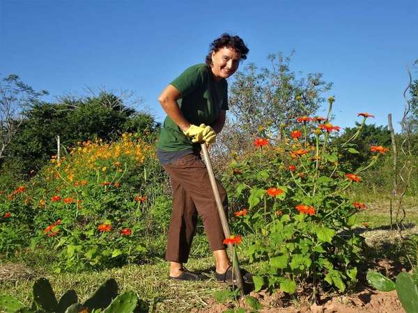 workaway Gisela gardening outdoors with flowers