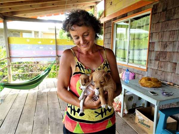 workaway gisela cuddle puppies outdoor dogsitting