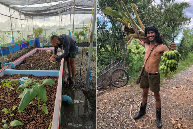 workaway permaculture planting learning experience