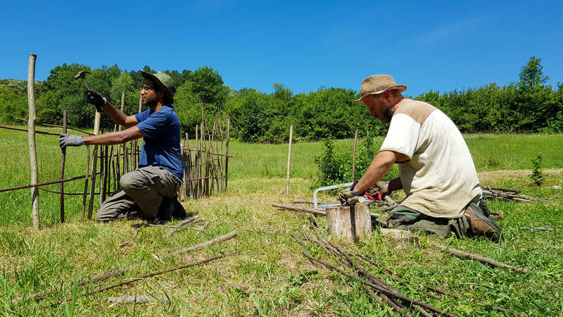 workawayer and host build wooden fence grass  field