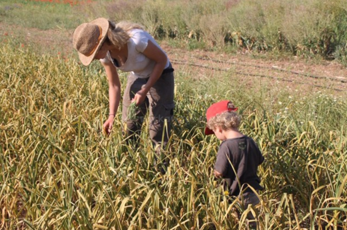catalonia farming workaway experience with family mum and son