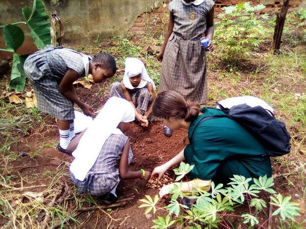 eco project planting trees community school children fight climate change volunteer teaching abroad