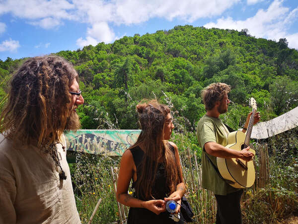 guitar jamming in nature mountains