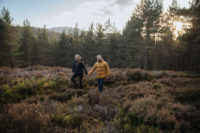 workaway travel couple sunset forest nature admire outdoors